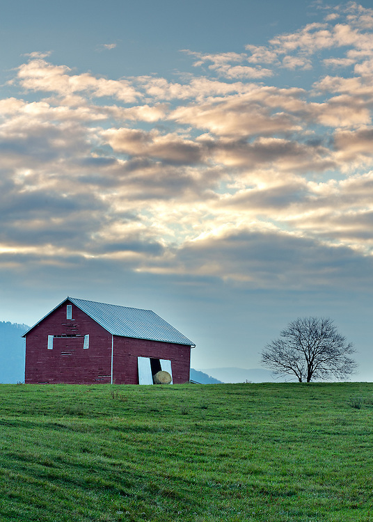 Below the Blue Ridge, Virginia_RP1495709.<br /> <br /> As I made my way eastward, up the foothills approaching the Blue Ridge, I left the cities behind for decidely more rural landscapes.  This sparse scene intrigued me, the rich colors of the field and barn contrasted with the stark sky and leafless tree.  The overcast was lifting and opening to the morning;  doors opened to a single hay bale;  age opened the weathered planks of the old structure;  a simple scene opened my eyes.