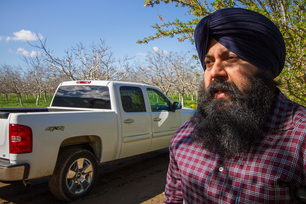 Yuba City, California: Fourth generation peach farmer Karm Bains.