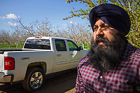 Yuba City, California: Fourth generation peach farmer Karm Bains.