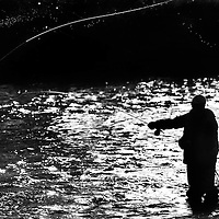 A fly fisherman cast his line while fishing the Deschutes River.