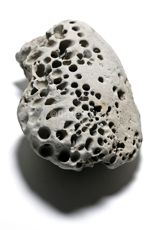 rock with many little holes