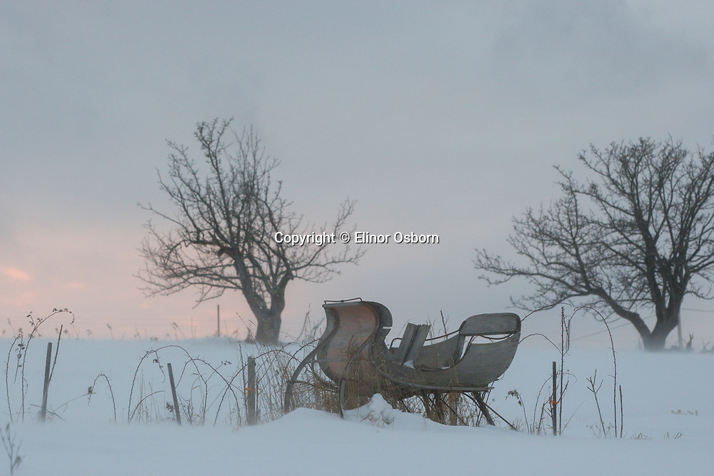 Sleigh at sunset