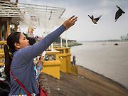 25 FEBRUARY 2015 - PHNOM PENH, CAMBODIA: A woman releases birds to make merit at a Buddhist shrine in Phnom Penh.    PHOTO BY JACK KURTZ