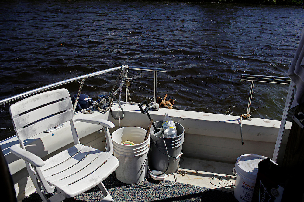 Scot Janikula's dog Renegade, looks to board Randy Eibler's houseboat from a skiff in Estero Bay, Fla. Many who live alone on their boat have a dog or cat to keep them company, and despite the cramped living space, Janikula said his dog loves being at sea.