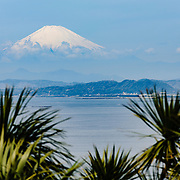 Enoshima Island, Fujisawa City, Kanagawa Prefecture, Japan. Ben Weller/www.wellerpix.com