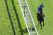 BATTASH (1) ridden by Jim Crowley and trained by Charlie Hills parades in front of the Grandstands after winning The Group 1 Coolmore Nunthorpe Stakes over 5f (£400,000) in a Course Record Time during the Ebor Festival at York Racecourse, York, United Kingdom on 23 August 2019.