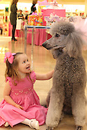Sophie's Birthday starring Pooka the Poodle. NM. 3.10.12