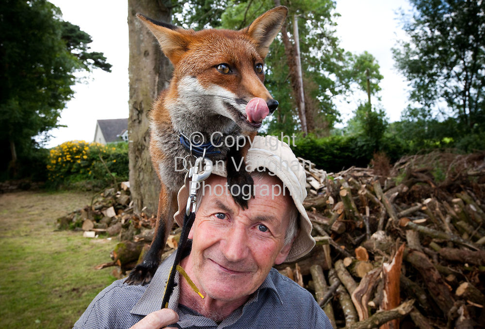 7/7/2009.Patsy Gibbons from Thomastown County Kilkenny pictured with Grainne his fox.Picture Dylan Vaughan.