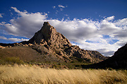 Elephant Head, Sonoran Desert, Coronado National Forest, Santa Rita Mountains, Green Valley, Arizona, USA.