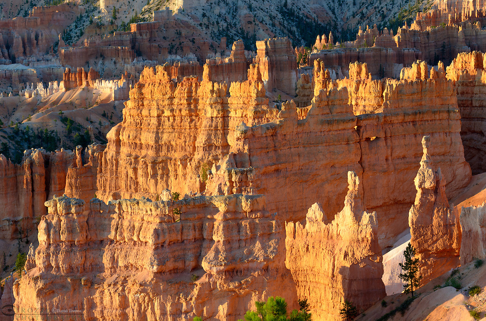 Sunrise and scenic views of the Amphitheater, Bryce Canyon National Park, located Utah, in the Southwestern United States.