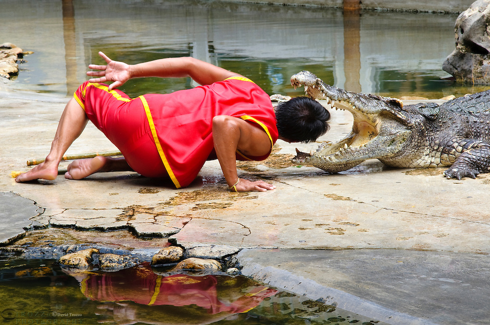 Crocodile show Samphran Elephant Ground & Zoo Nakhon Pathom province, Thailand.