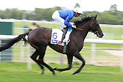 Hamada ridden by jockey William Buick and trained by trainer Charlie Appleby going to post before winning the The Sky Bet Jorvik Handicap Stakes over 1m 4f (£50,000) the York Dante Meeting at York Racecourse, York, United Kingdom on 16 May 2018. Picture by Mick Atkins.