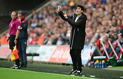 Newcastle United First Team Coach Mikel Antia gives his team directions in the absence of Newcastle United manager Rafa Benitez - Mandatory by-line: Alex James/JMP - 10/09/2017 - FOOTBALL - Liberty Stadium - Swansea, England - Swansea City v Newcastle United - Premier League