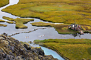 Landmannalaugar 2010