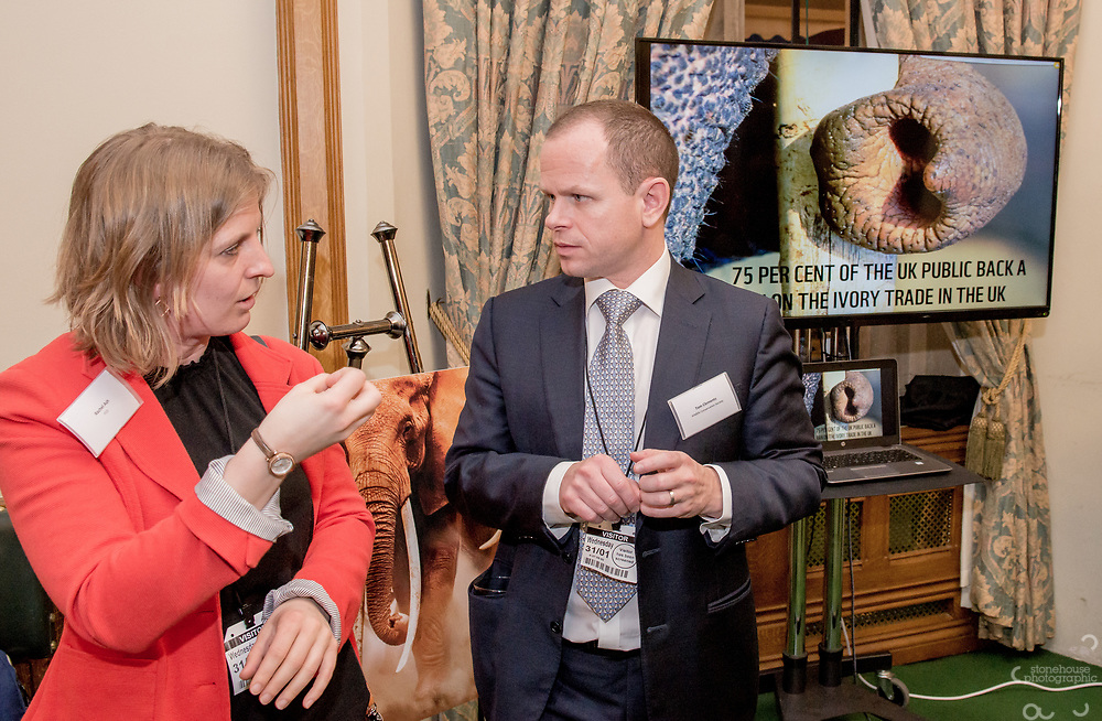Attendee's chat during the Chinese Embassy and WWF-UK's reception to mark the closure of China's domestic Ivory Market, Churchill room, Palace of Westminster, London.<br /> Hosted by Mr Richard Graham MP.<br /> <br /> 31st January, 2018.