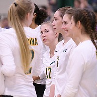 1st year setter Kirstin Greve (17) of the Regina Cougars during Women's Volleyball home game on November 18 at Centre for Kinesiology, Health and Sport. Credit: /Arthur Images