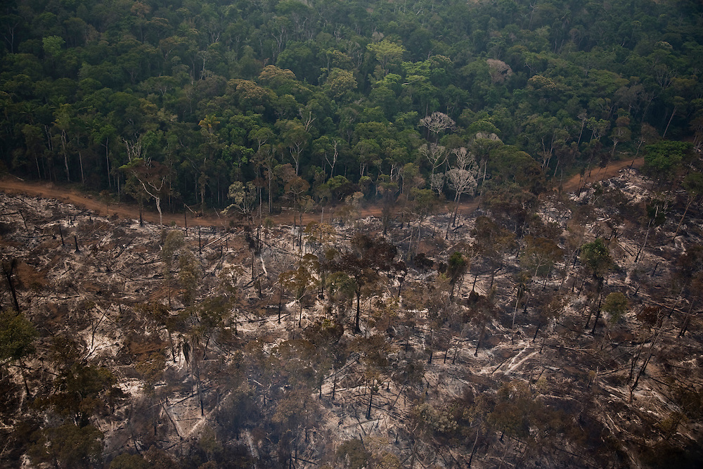 Mato Grosso, Brazil. September 17th 2007. Flight from Alta Floresta to Claudia (Brazilian Amazon). Views of the rainforest during the burning season were big sections are set on fire by farmers to be cleared for soy farming or cattle breeding.