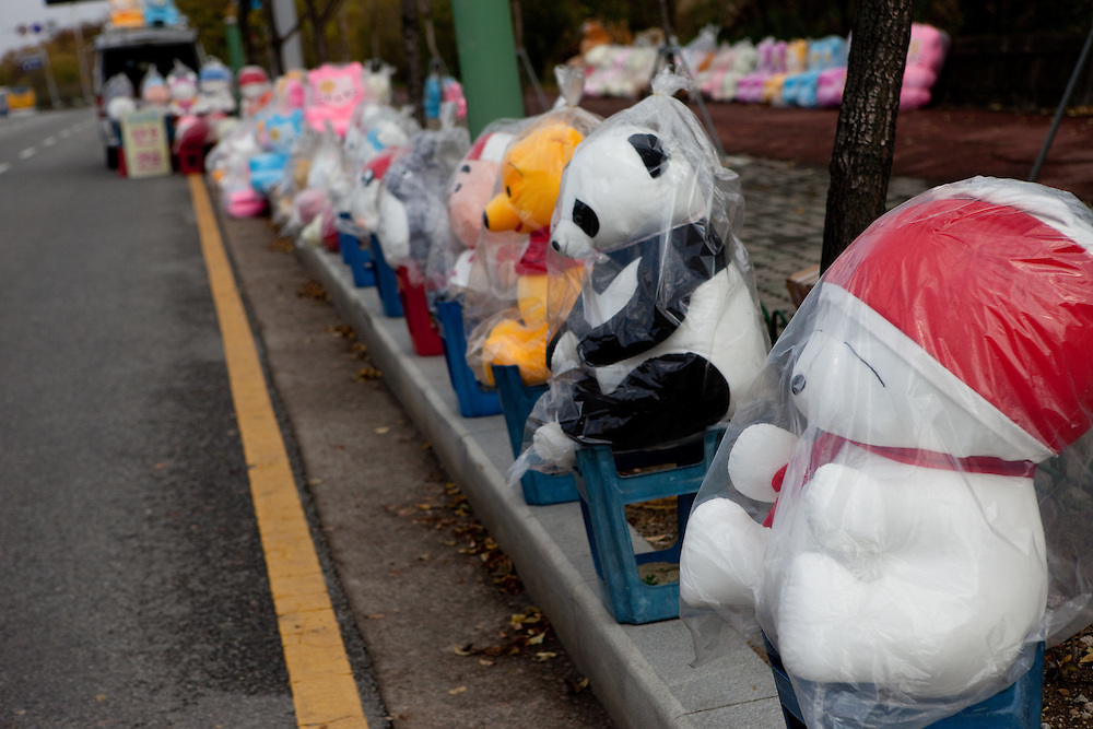 Teddy bears wraped in plastic for sale close to Gongju, this Korean city was the second capital of the Baekje kingdom from AD 475 for 70 years, South Korea, Republic of Korea, KOR, 01 November 2009.