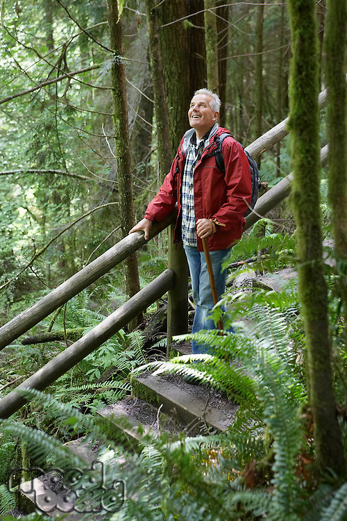 Senior man on trail in forest looking up