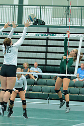 26 August 2017:  Jessica McCall & Emily Gutzwiler during the green-white scrimmage of the Illinois Wesleyan Titans in Shirk Center, Bloomington IL