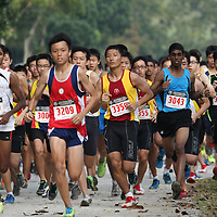 2013 National Schools Cross Country Championships