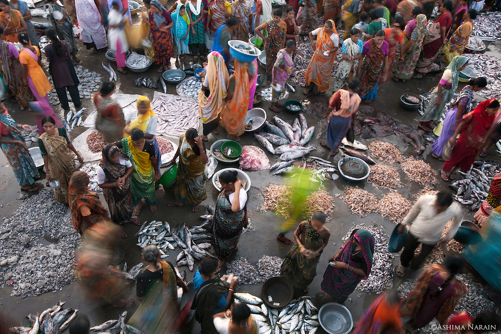 An aerial shot of Vanakbara Fish Market
