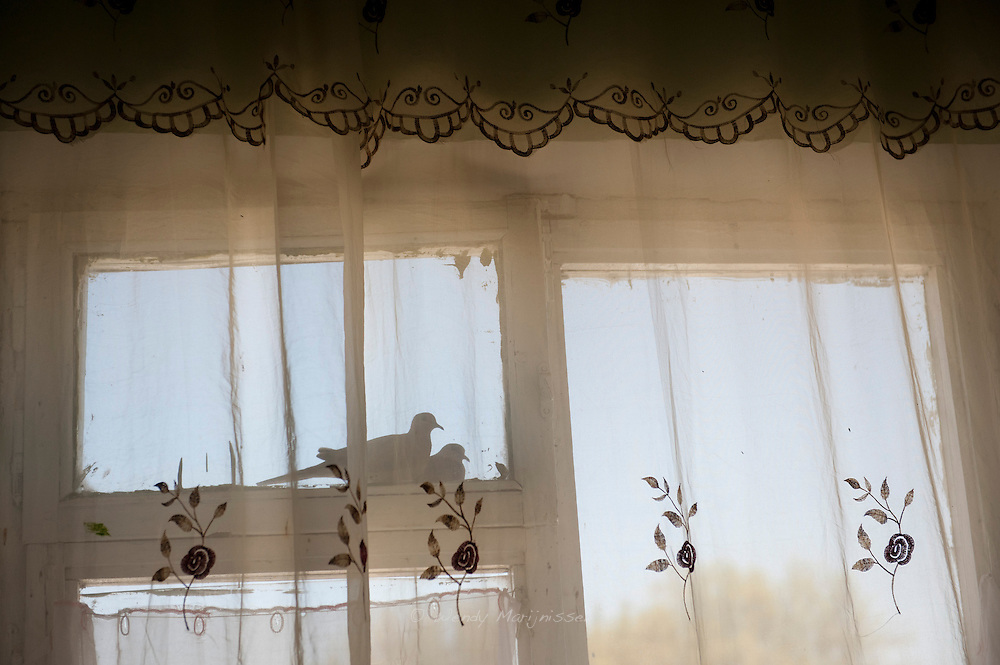 Two doves sit on a window ledge outside the home of 16 year old patient Shahnoza.