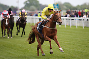 SUMMER MOON (5) ridden by P J McDonald and trained by Mark Johnston winning The Longines Irish Champions Weekend Handicap Stakes over 1m 4f (£20,000)   during the third day of the Dante Festival at York Racecourse, York, United Kingdom on 17 May 2019.