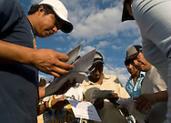 NEWS&GUIDE PHOTO / PRICE CHAMBERS.Cesar and the rest of the group inspects their new car registrations before hitting the road again at a checkpoint several miles past the Mexican border in Nuevo Laredo. The migrants breathed a collective sigh of relief after obtaining the legal documents and entering their home country. .