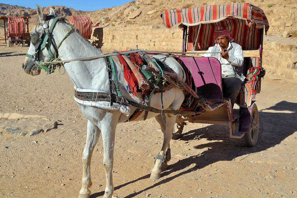 Horse-drawn Buggy Ride in Petra, Jordan<br />