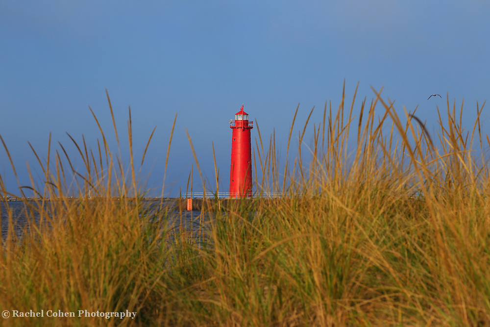 &quot;Muskegon Pier Lighthouse&quot;<br /> <br /> Beautiful conical red lighthouse in Muskegon Michigan as seen through tufts of sand grass!! A scenic Lake Michigan lighthouse!!<br /> <br /> Lighthouses of the Great Lakes by Rachel Cohen