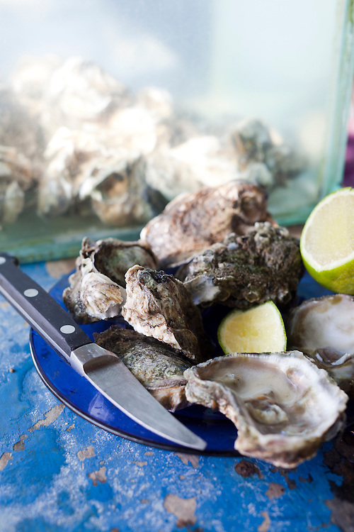 Oysters at Rocka Beach Lounge and Restaurant.