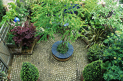 General view of the front garden from above. Cobbled pavers and circular wooden seat around base of central  tree - Cercidiphyllum japonicum