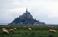Sheep grazing near Mont St. Michel, in Normandy - photograph by Owen Franken