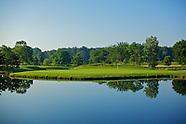 Swan Lake Silver