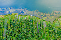 Aerial of farms and algae on Lake Atitlan Guatemala. The lake has experienced pollution problems for years.