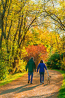 Couple walking their dog on the Highline Canal path on an Autumn afternoon, Littleton, Colorado USA.