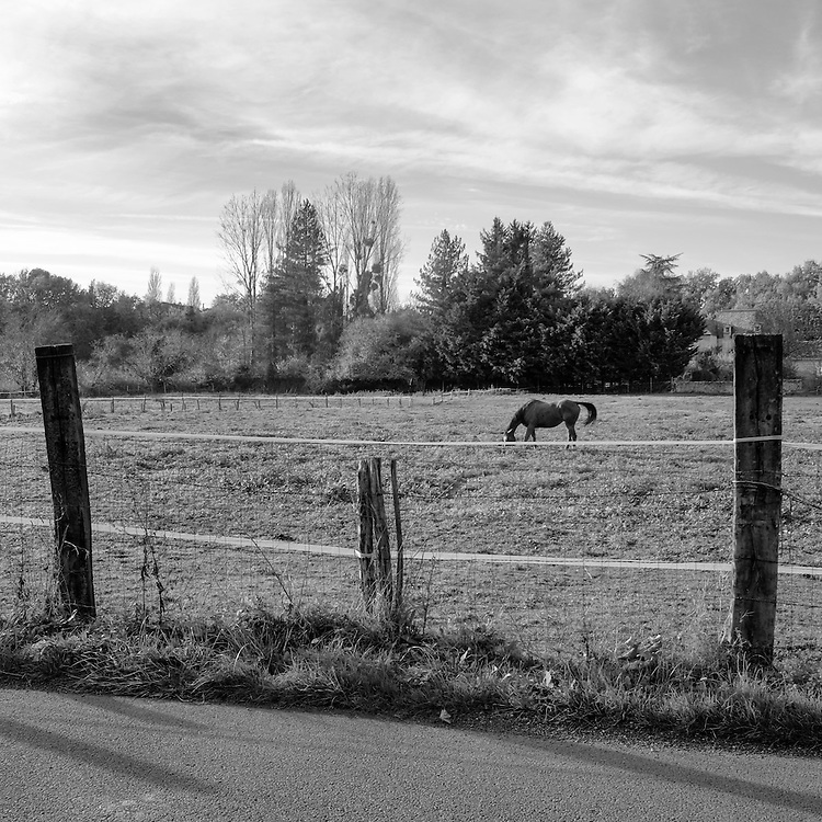 Vouillé, la promenade. 21 novembre 2014.