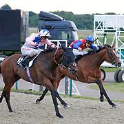 Fly Haaf and Adam Kirby winning the 9.00 race