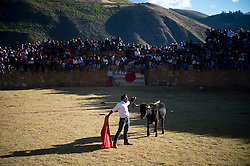 Yawar Fiesta (Feast of Blood) celebrations in the Andean town of Coyllurqui, in Apurimac, Peru. This Peruvian tradition, that takes place annually in July during the Independence day celebrations, consists of capturing a condor and parading around town throughout the week. The highlight of the tradition is bullfighting with the condor strapped on top of the bull. For locals, the bull represents the Spanish and the condor the native population. The condor is freed in a ceremony called Cacharpari.