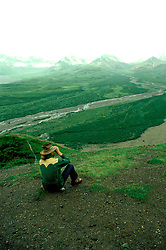 AK: Alaska Denali National Park, Spotting Wildlife  .Photo Copyright: Lee Foster, lee@fostertravel.com, www.fostertravel.com, (510) 549-2202.Image: akdena228
