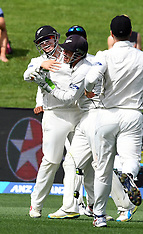 Hamilton-Cricket, New Zealand v South Africa, 3rd test, day 2
