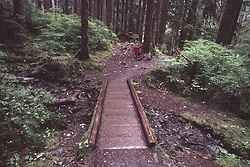 Footbridge to Log Cabin and Sol Duc Falls, Olympic National Park, Washington, US