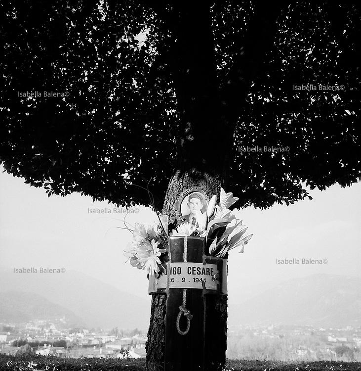 Italia, 2004, dal libro Ci resta il nome. Bassano del Grappa (Vicenza). Viale dei Martiri. Il 26 settembre 1944 vengono impiccati agli alberi o fucilati 31 partigiani.Bassano del Grappa (Vicenza). Viale dei Martiri.On 26 September 1944, 31 partisans were hanged from trees or shot. arte, arts, cultura, culture, monument, monumento, sito storico, heritage site
