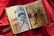 Altea, first half of the 12th century, illuminated manuscript,  Biblioteca Medicea Laurenziana, Florence, Italy