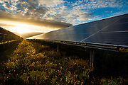 Solar panels for the Solar Park reflecting in the setting sun