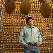 Tosh Kuratomi surrounded by rows of Hachiya and  Gyombo persimmons after they have been peeled and hung to dry using the Japanese method, Hoshigaki, at the Otow farms in Granite Bay, California.