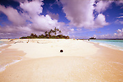 Genetu Island, Papua New Guinea, deserted, smaill coconut tree, south pacific