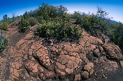 Lava Flows, Hawaii Volcanoes National Park, Big Island, Hawaii, US