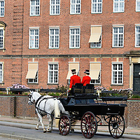 Royal Horse Carriage in Copenhagen, Denmark <br /> Inside the Christiansborg Palace are the Royal Stables and Show Grounds. They maintain the horses and carriages used to transport guests of the Royal Family during major ceremonies. You can visit the stables to see a great collection of historical coaches, uniforms, harnesses and more. If you are lucky, you will see some of the 20 royal horses being exercised around the city streets.